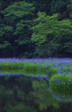 Синяя трава. Дневник пятнадцатилетней наркоманки by kkorotkevich