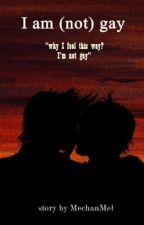 I am (not) gay by MechanMel