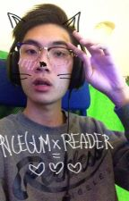 Ricegum x Reader by morsveska