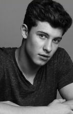 Shawn Mendes Imagines by shawns_lazy_eye
