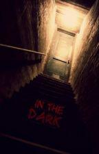 In the Dark by Bouvier-lover909
