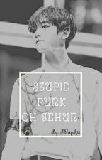 Stupid Punk Oh Sehun ↭ Hunhan by IShipIttt