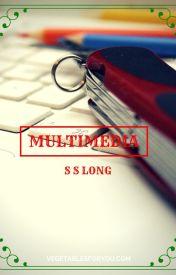 Multimedia by S-S-Long
