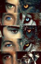 « Wolves » by xhemmingsbaexx