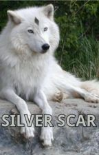 silver scar on hold by ilovelucy4ever