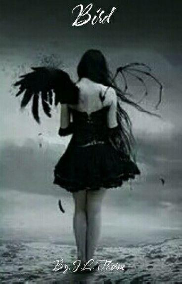 Bird by xxButterflyKissesxx