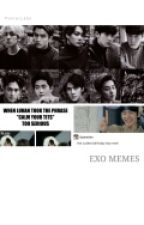 Exo Memes by flyingcity