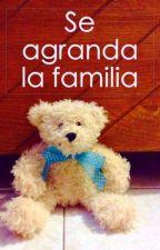 Se agranda la familia (Seventeen) by Sorodi