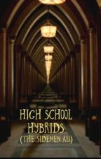High school hybrids (The Sidemen AU) by MoonDuskIndustries