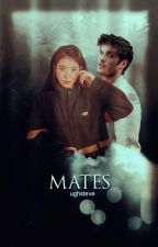 Mates ○ I. Lahey by ughsteve
