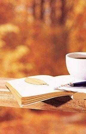 Untaian Kata Indah Dari Beberapa Novel Bagian Satu Wattpad