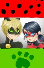 Watching Miraculous Ladybug (season one) by Yangiregirl11