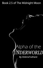 Alpha Of The Underworld #2.5 (On Hold) by delenatwihard