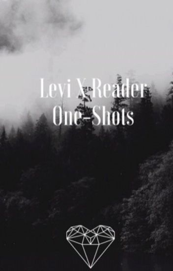 Levi x Reader One-Shots By: FanFicWriter12347