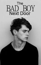 The Bad Boy Next Door by vaniteux
