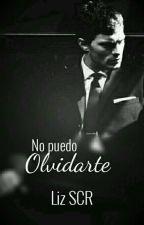 No Puedo Olvidarte (Christian Grey) by LizSCR