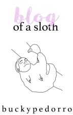 blog of a sloth™ by buckypedorro