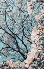 Blossom by b_funk22