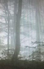 La forêt maudite de rolio by minoulou