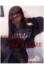 Feeling the Breeze (A Chris Brown love story) by queeengoldchains