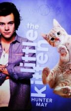 The Little Kitten by 1DFanFic_iran