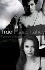 True | Isaac Lahey <<zawieszone>> by PannaHerondale