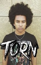 Torn // Jacob Perez  by exclusiveprince