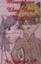 Miraculous: Tales Of Ladybug And Cat Noir; They Now Know by WolfGirl_170