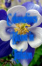 Columbines Bloom in Littleton by aqualena