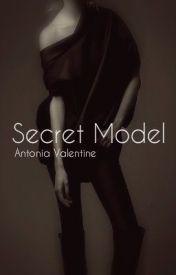 Secret Model (Discontinuing) by MrTotoro13