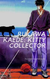 Rukawa Kaede: Kitty Collector by hustlersastronauts