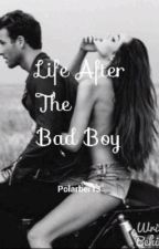 Life after the bad boy (Sequel to Falling in love with a bad boy) by Polarbear3