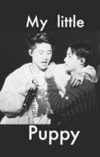 [LONGFIC] Thú cưng vạn năng (Binhwan-iKON) by TraceyWang02