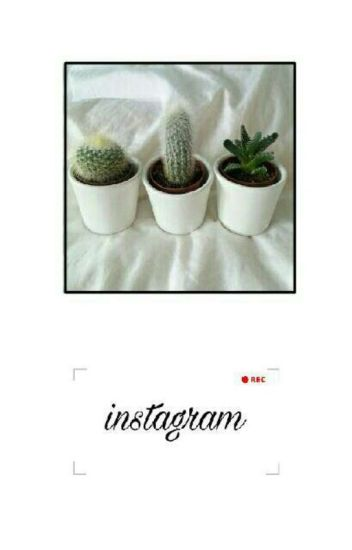 Instagram [Zodiaco] *Pausada*