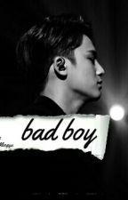 BadBoy • Kim Mingyu #wattys2016 by CozyWonwoo