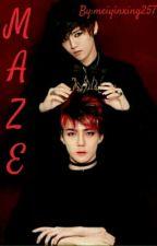 MAZE  by meiyinxing257