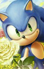 Frases De Sonic.  by AmyLovesPiko
