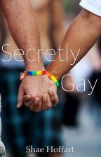 Secretly Gay (BoyxBoy) by Shae_Hoffart