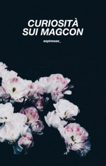 Curiosità sui Magcon