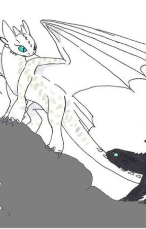 Hiccup and Toothless: Mystery of the Fury - *** - Wattpad