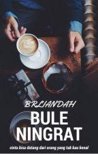 Bule Ningrat [COMPLETED] by brliandah