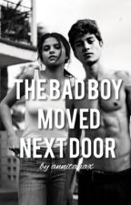 The Bad Boy Moved Next Door by annitaaax