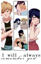 I will always remember you by _skilder_