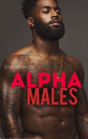 alpha males: blackboyjoy