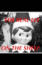 THE REAL ELF ON THE SHELF by aberoo6082