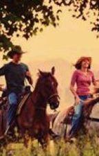 Wild Horses-Niall horan y tu (adaptada by yayahoran31