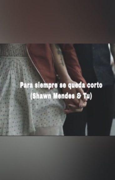 Para siempre se queda corto ( Shawn Mendes & Tu)