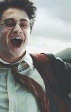 L'Armée De Dumbledore  by LesMaraudeuses