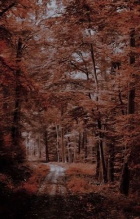 3 ninjas photos by rocknrollweasley_80s