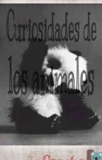 Curiosidades De Los Animales by pancha_castillocx